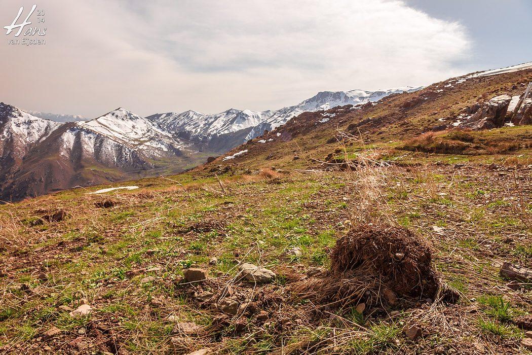 Halgort Mountains (HvE-20140402-8288)
