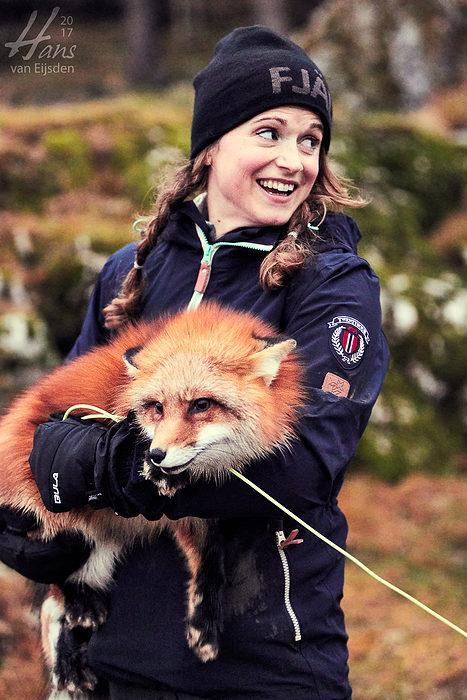Ayla The Fox (HvE-20161229-0518)