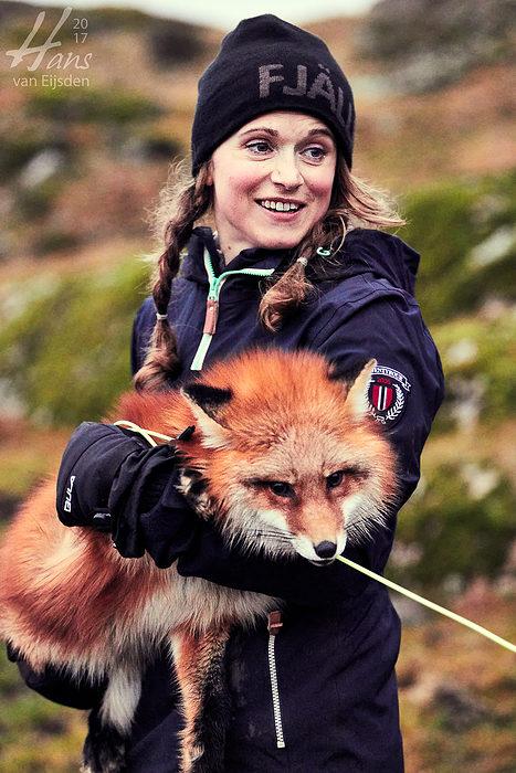 Ayla The Fox (HvE-20161229-0528)